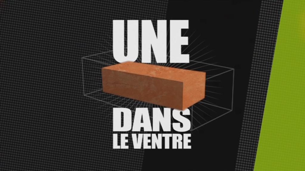 Pavillonchamps-UneBriqueDansLeVentre